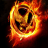 Quick Review – The Hunger Games